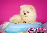 ☺♥ Cute little lady...