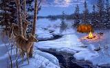 Moon Shadows - Darrel Bush