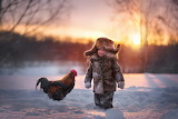 Little boy with a rooster in the snow
