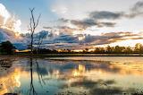 clima bioma pantanal
