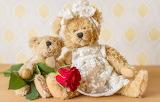 Teddy bears - rose - flower - toys