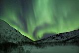 Kvaloya Island Tromso