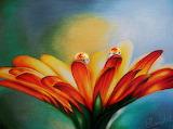 gerbra daisy