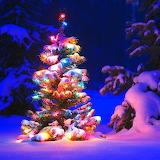 *This Christmas...