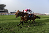 Voy Por Ustedes and Choc Thornton 2009 Melling Chase