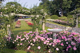 GardenNew133