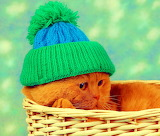 ☺♥ Prepared for the winter...