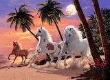 Horses on the Beach - Steve Read