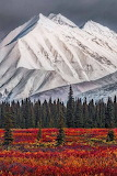 Places - Mt McKinley - Denali National Park - Alaska