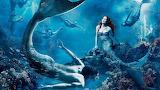 #Fantasy Mermaid World
