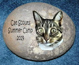 Raz's rock Cat Scouts Summer Camp 2019