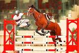 Horse Jump...