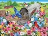 Nesting in the Mailbox~ Linda Bittner