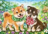 Japanese Shiba Puppies by Kayomi Harai