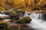 EvgeniDinevPhotography Autumn River