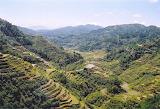 Philippines,Banaue,Les rizières