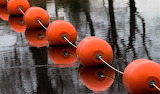 Red buoys on a line