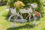 Bicycle-flower-planter