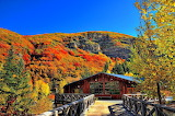 Autumn Scene Cabin and Mountains