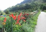 Hiking West Again