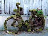 Mossy Bike