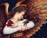 Angel Dove Cat