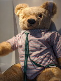 Elgin Museum Teddy