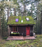 Cabins - with green roofs