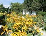 mein Garten 01