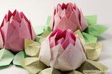 ^ Lotus Flower Origami