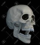 Halloween-scarry-vampire-skull-isolated-on-black-background