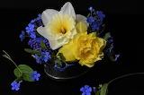 Abbinamento giallo e viola