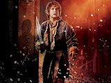 The Hobbit - Desolation of Smaug - Bilbo