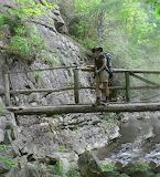 Trail Name - Honey Bunch, Crossing Laurel Fork Creek