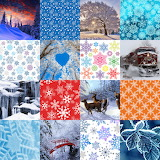 Winter Collage 2