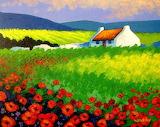 John Nolan - poppyscape Wicklow