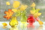 autumn leaves in glass vases