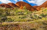 Uluru-Kata Tjuta National Park Australia