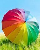 umbrella-colors