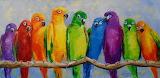A-flock-of-parrots-olha-darchuk