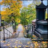 Autumn, Not April, in Paris