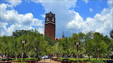 Campus of the University of Florida at Gainesville USA