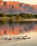 Lago montañas445