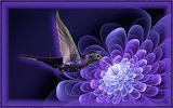 Hummingbird visit a fractal flower by marijeberting-d8wdjqv