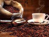 Granos de café y cafe