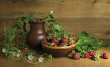 Bindweed And Strawberries