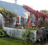 Rose-covered-cottage-Nantucket