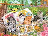 Gatti sull'amaca