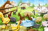 farm 888