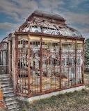 Abandoned green house